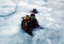 Ice Diving Antarctica Paul Rose